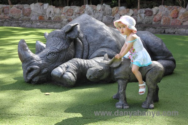 Riding the baby rhino